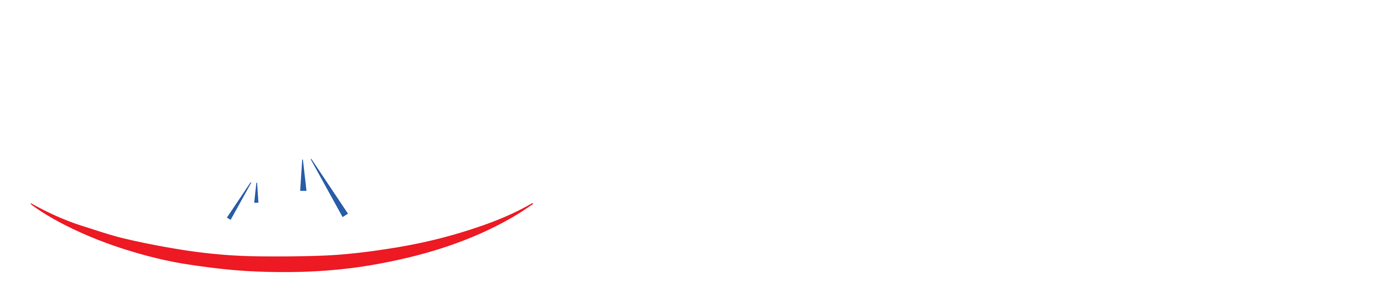 Fit and Fun Logo